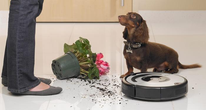 Oferta iRobot Roomba 656 PET
