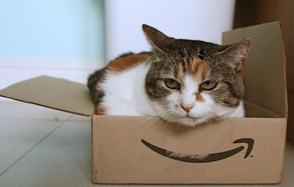 Tu gato prefiere Amazon