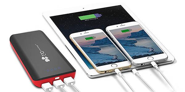 Batería EC Technology barata