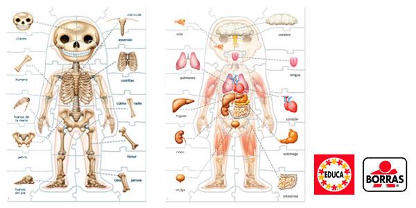 Chollo Juego Aprendo El cuerpo humano de Educa Borrás por sólo 10,95 ...