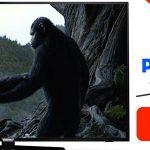 Smart TV LED Philips 55PUS6162 UHD 4K