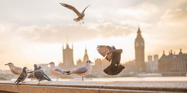 vuelos baratos a Londres desde España