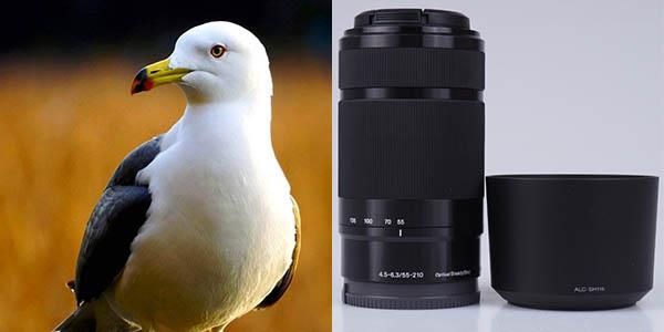 Sony SEL55210 de 55-210mm F4.5-6.3mm barato
