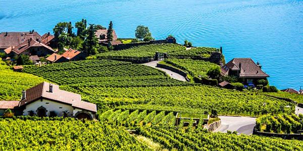 viaje entre viñedos y pueblos bonitos por el Lago Lenam