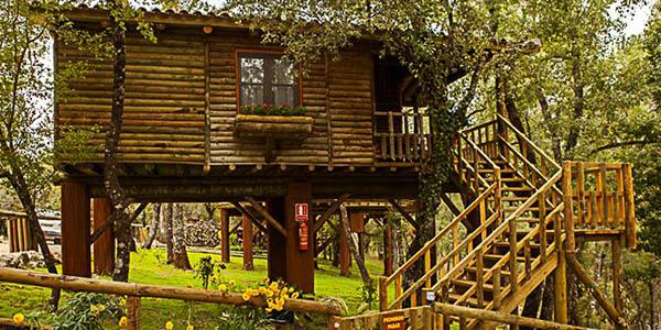 Nidos de Santa María alojamientos en los árboles Jaén oferta