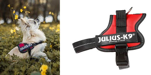 Julius-K9 arnes para perros pequeños barato