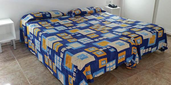 apartamentos Chinyero baratos que aceptan mascotas Tenerife